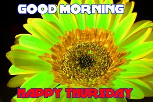 Thursday Good Morning Pictures Images Photo Download For Whatsapp