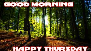 Thursday Good Morning Photo Images Pictures Download