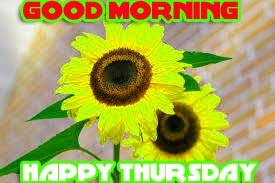 Thursday Good Morning Photo Images Pics HD Download