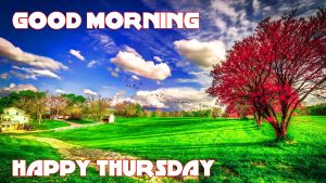 Thursday Good Morning Pictures Photo Images HD