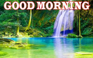 Nature Good Morning Pictures Images Photo Download