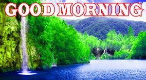 Nature Good Morning Pictures Wallpaper Download