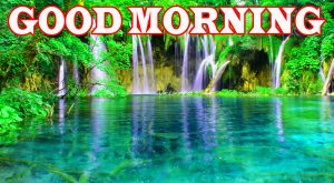 Nature Good Morning Photo Wallpaper Pictures Download