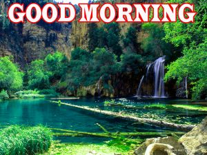 Nature Good Morning Wallpaper Pictures Images HD Download