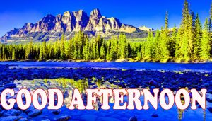 Good Afternoon Wallpaper Pictures Images Free HD
