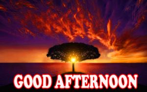 Good Afternoon Wallpaper Photo Images HD