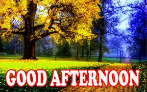 Good Afternoon Wallpaper Pictures Images HD Download