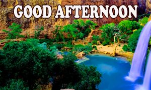 Good Afternoon Pictures Images Photo HD Download