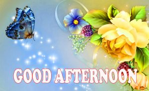 Good Afternoon Wallpaper Photo Images Pictures HD