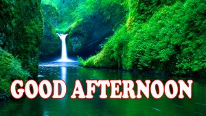 Good Afternoon Pics Images Photo Wallpaper Download