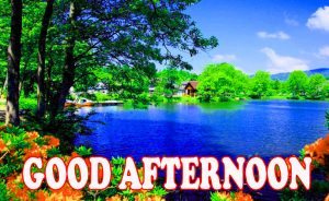 Good Afternoon Wallpaper Photo Images Free HD