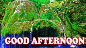 Good Afternoon Images Photo Wallpaper HD Download