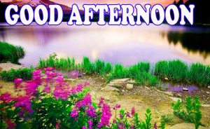Good Afternoon Photo Wallpaper Pictures Free Download