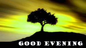 Good Evening Wallpaper Pictures Images Free Download