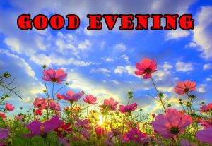 Good Evening Wallpaper Pictures Images For Girlfriend