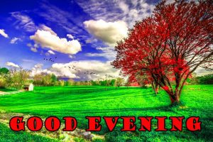 Good Evening Pictures Wallpaper Photo For Facebook