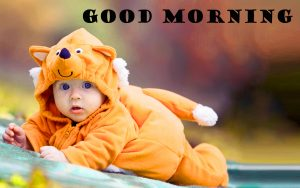 Latest Good Morning Images Photo Wallpaper Free Download