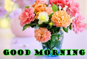 Latest Good Morning Wallpaper Pictures Images For Whatsapp