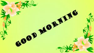Latest Good Morning Photo Wallpaper Images Free Download