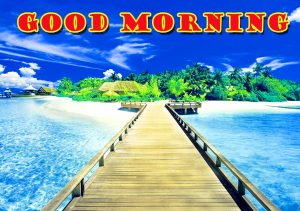 Latest Good Morning Pictures Images Photo HD