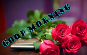 Latest Good Morning Photo Wallpaper Images For Whatsapp