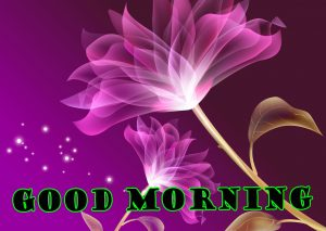 Latest Good Morning Photo Wallpaper Pictures Free HD