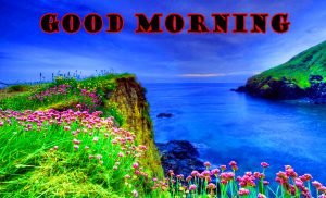 Latest Good Morning Wallpaper Pictures Download