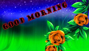 Latest Good Morning Wallpaper Pictures Images HD Download