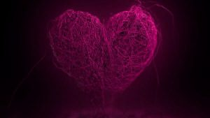 Broken Heart Images Photo pics Free Download