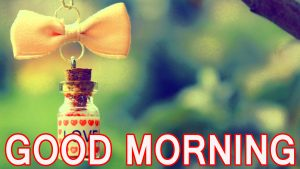 Cute Good Morning Images Wallpaper Photo Pictures Free Download