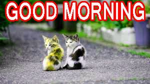 Cute Good Morning Wallpaper Pics Pictures Download For Facebook