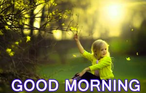 Cute Good Morning Images Wallpaper Pictures Free HD Download