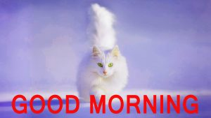 Cute Good Morning Images Pictures Pics Free Download