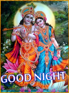 Radha Krishna Hindu God Religious good night images Wallpaper Pictures HD
