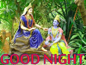 Radha Krishna Hindu God Religious good night images Wallpaper Pics Free Download