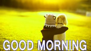 Good Morning Friends Images Pictures Wallpaper Photo Download