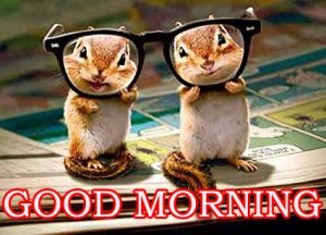 Funny Good Morning Images Wallpaper Pictures Free HD Download