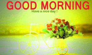 Good Morning Friends Images Photo Pictures Free Download