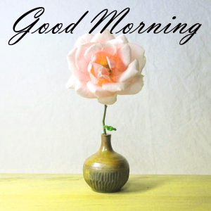 New Good Morning Images Full HD Collection Wallpaper Pictures Free Download