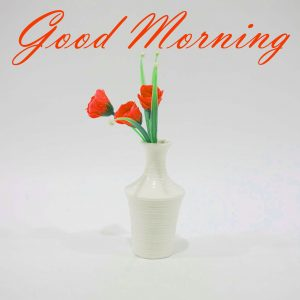 New Good Morning Images Full HD Collection Photo Download