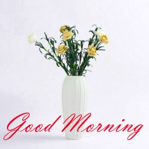 New Good Morning Images Full HD Collection Photo Pictures HD For Whatsapp