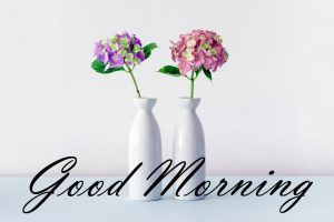 New Good Morning Images Full HD Collection Wallpaper Photo Free Download
