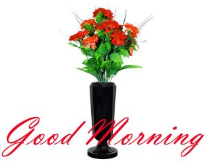 New Good Morning Images Full HD Collection Pictures Photo Download