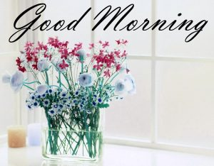 New Good Morning Images Full HD Collection Photo Wallpaper Free Download