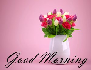 New Good Morning Images Full HD Collection Photo Pictures HD Download