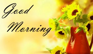 New Good Morning Images Full HD Collection Wallpaper Pics Free HD