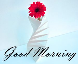 New Good Morning Images Full HD Collection Wallpaper Pics Pictures HD