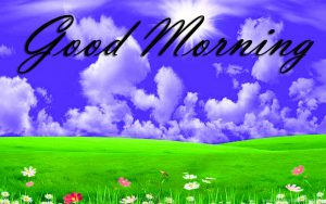 New Good Morning Images Full HD Collection Wallpaper Pics Free Download