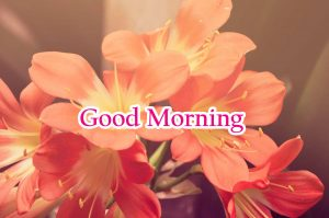 Good Morning Greetings images Wallpaper Photo Pics HD For Whatsapp