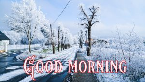 Good Morning Greetings images Wallpaper Photo HD